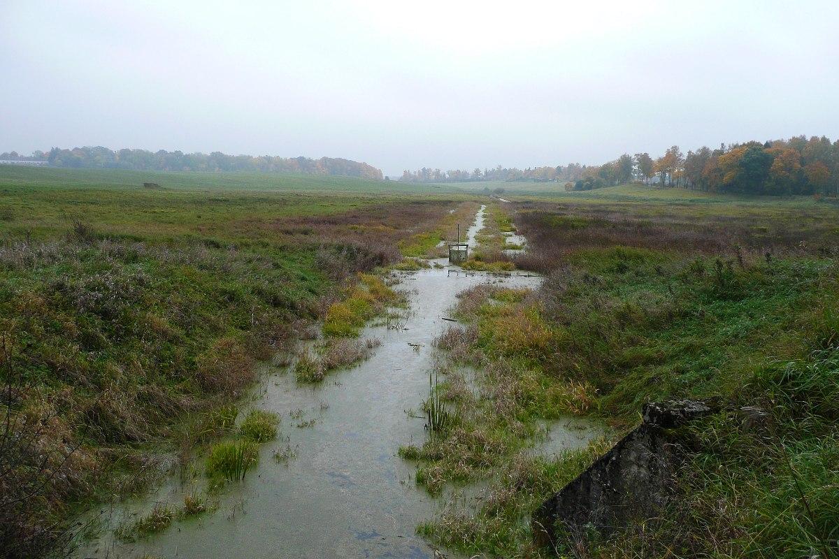 Łąki w okolicy Bęsi