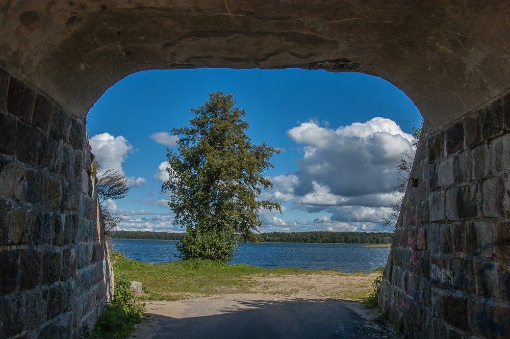 Dąbrówno - jezioro Dąbrowa Wielka