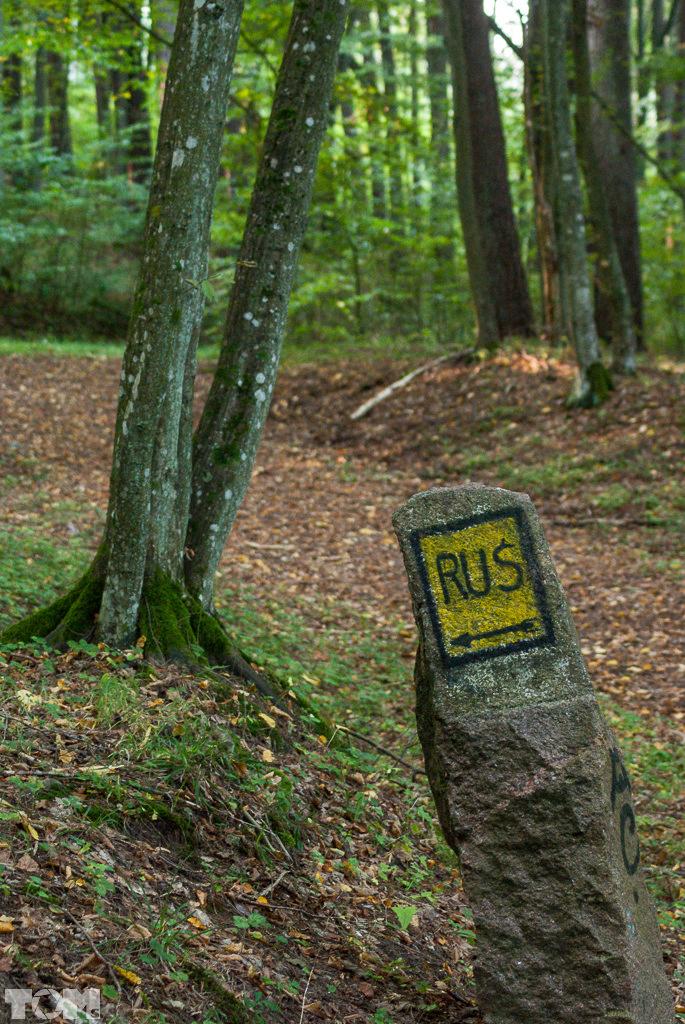Las Warmiński