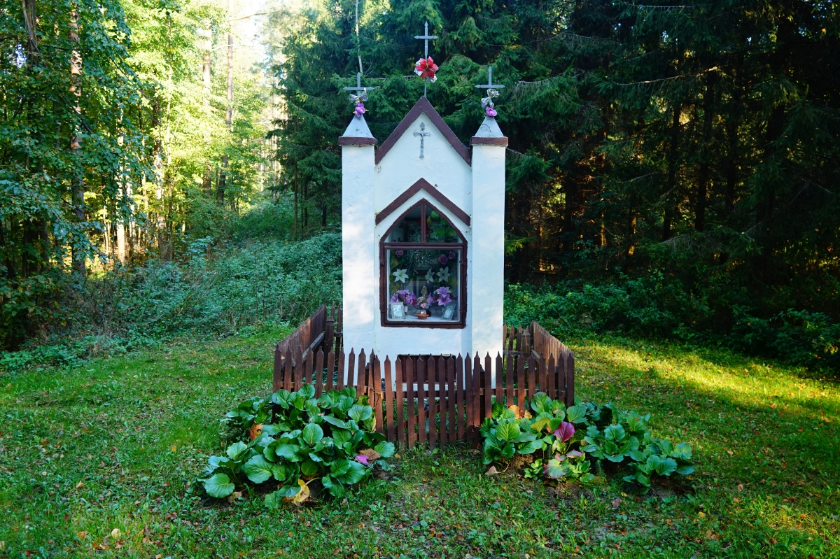 Przydrożna kapliczka, okolice wsi Wolnica, kier. Łaniewo