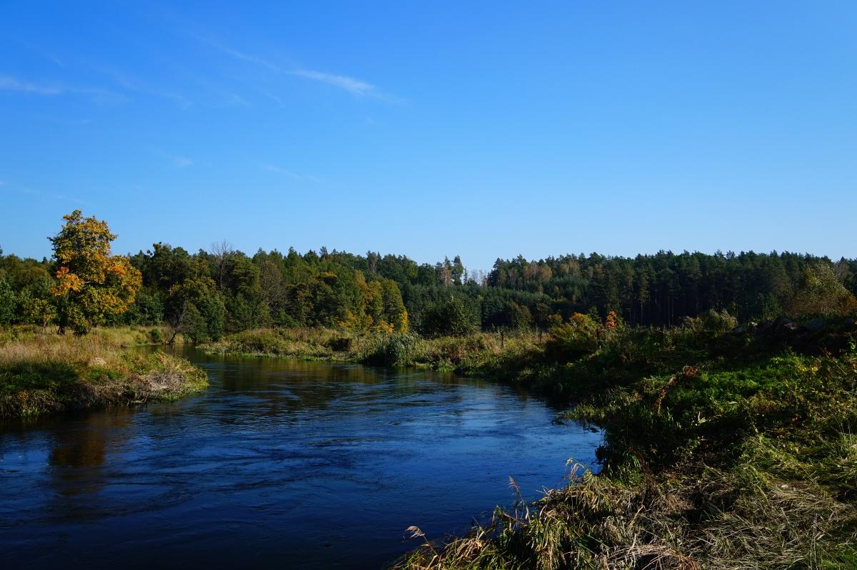 Rzeka Łyna, wieś Kosyń