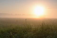 Łąka pod Łajsami o wschodzie słońca