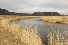 Łyna, okolice Bartąga, widok w kier. Olsztyna
