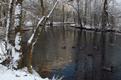Łyna w Rusi, kierunek wschodni