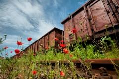 Bocznica kolejowa na olsztyńskim Zatorzu