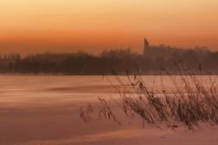 Brzeg jeziora Kortowskiego