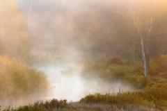 Brzegi rzeki Łyny w okolicy Knopina