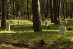 Cmentarz wojenny z czasów I Wojny Światowej w Lidzbarku Warmińskim