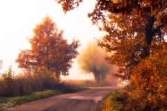 Czarny Kierz, okolice wsi jesienią o świcie