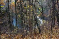 Dolina Symsarny, jesień