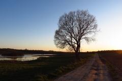 Droga Knopin - Glotowo, kier. pd-zach.