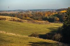 Droga Studzianka-Orzechowo