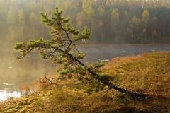 Jezioro Perszk (Czarne)