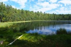Jezioro Błotnik, okolice wsi Kochanówka