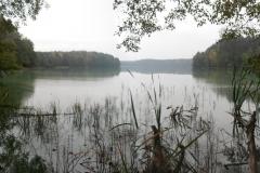 Jezioro Czarne k. wsi Czarny Piec