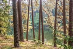 Jezioro Dłużek koło jeziora Łańskiego
