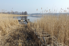 Jezioro Linowskie, brzeg południowo-zachodni