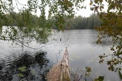 Jezioro Oczko