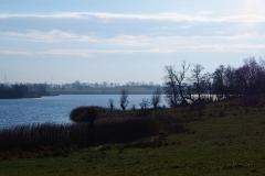 Jezioro Wielochowskie, brzeg północny