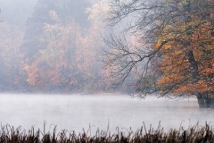 Jezioro Wulpińskie w Barwinach