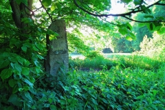 Kamienny drogowskaz przy starej drodze do Jełgunia