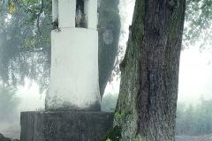 Kapliczka w Trękusie