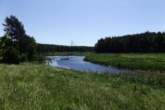 Leśny zbiornik retencyjny koło leśnictwa Stary Dwór w pobliżu Olsztyna