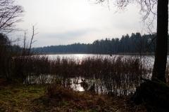 Leśne jeziorko, okolice wsi Łaniewo