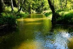 Lidzbark Warmiński, rzeka Symsarna. Okolice ośrodka wypoczynkowego Zacisze