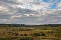 Nadrowo - rezerwat przyrody Bagno Nadrowskie