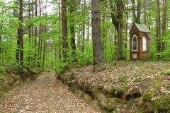 Okolice Spręcowa - leśna kapliczka, kierunek pn-zach