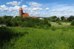 Panorama Dobrego Miasta, kierunek pn-wsch.