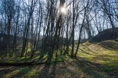 Pieniężno - rezerwat doliny rzeki Wałszy