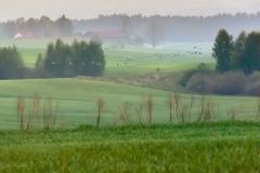 Pola na północny zachód od Sętala