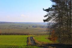 Pola w okolicach Stawigudy