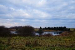 Polne oczko wodne, okolice wsi Lauda