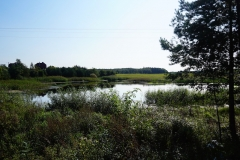 Polne oczko wodne, okolice wsi Tolniki Wielkie, pow.lidzbarski, kierunek wschodni