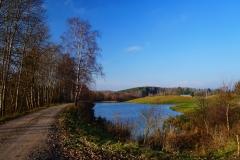 Polny staw, okolice wsi Sarnowo