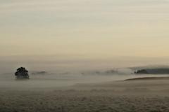 Poranek nad łąkami, okolice Gągławek, kierunek pół.-wsch