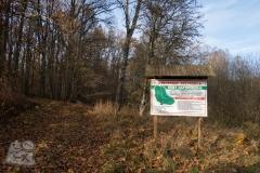 Rezerwat-przyrody-Deby-Napiwodzkie