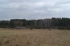 Rozlewisko k. leśniczówki Przykop