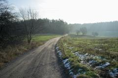 Ruś, wjazd do lasów łańskich gościńcem niborskim