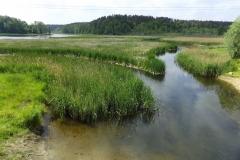 Rzeka Łyna. Wypływa z Jeziora Kiernoz Wielki, łączy się z nią rzeka Marózka. Wieś Kurki