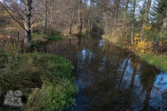 Rzeka-Omulew-we-wsi-Kot-1