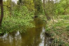 Rzeka Symsarna w Lidzbarku Warmińskim, kierunek południowy
