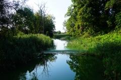 Rzeka Symsarna, wieś Makowo, pow. lidzbarski