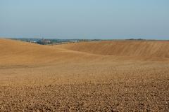 Sapuny, pole z widokiem na Barczewo