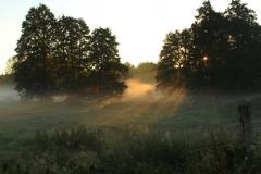 Sierpniowa mgła nad stawami, Pawłowo