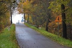 Stoczek Klasztorny - rowerowym szlakiem