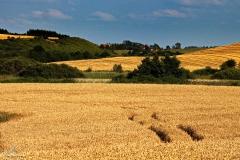Ustnik - widok na wieś Tłokowo